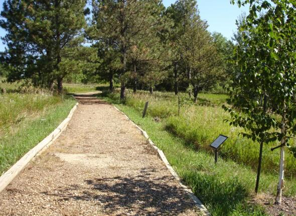 2012 Arboretum (2)