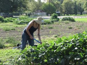 lady watering garden