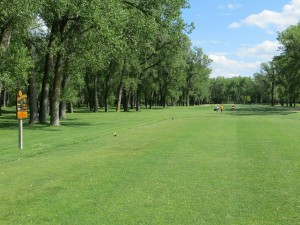 2015-Riverwood-Golf-Course-(24)