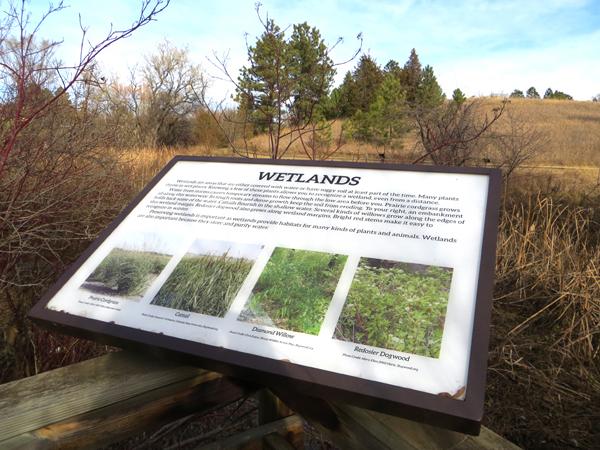 Arboretum Wetland Sign