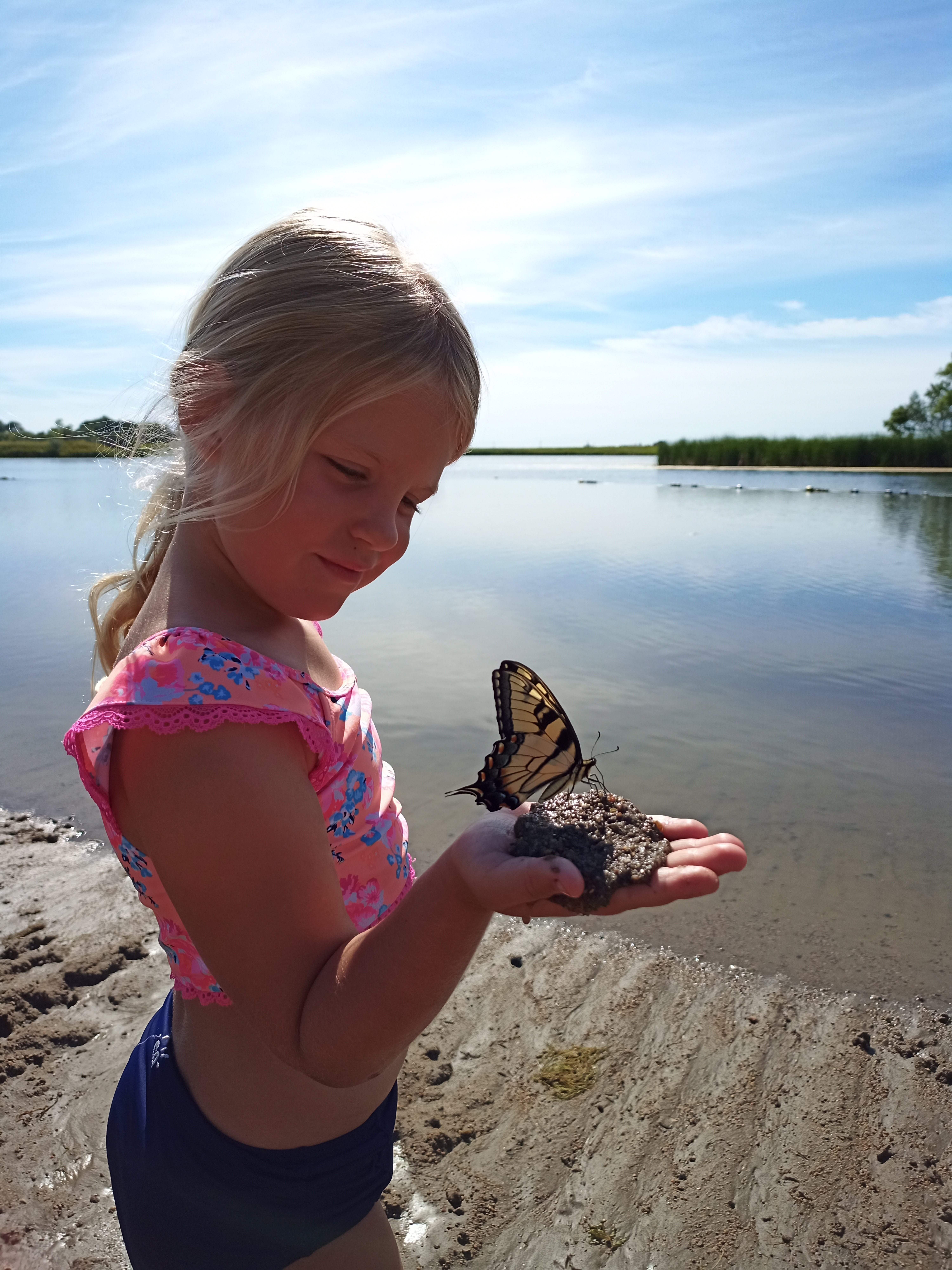 Girl holding butterfly on beach