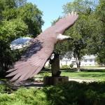 Custer Park