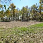 Pioneer Park 2